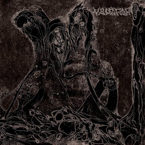 vassafor2012